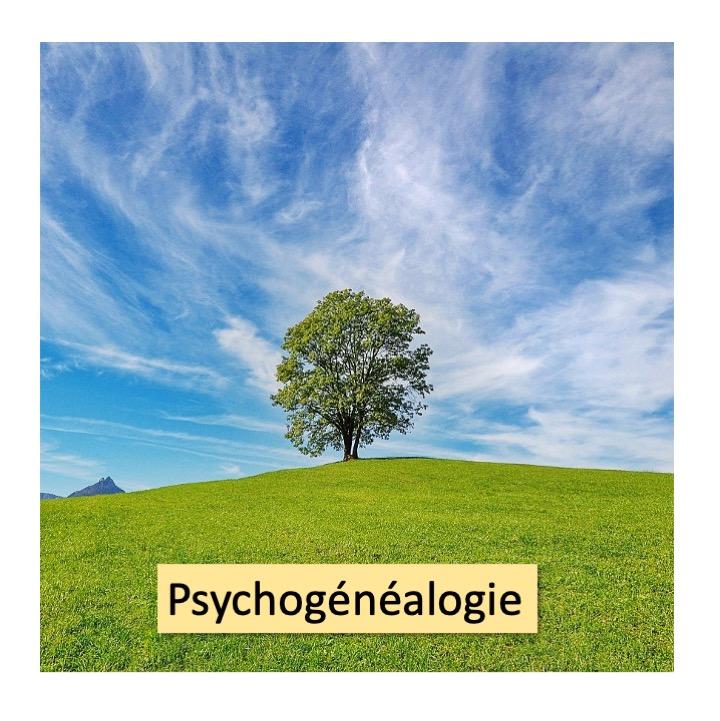 Psychogénéalogie Menu